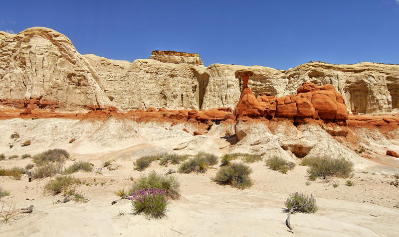 Download Rock Formation In The Desert. Stock Photo - Image of canyon, grand: 73344194