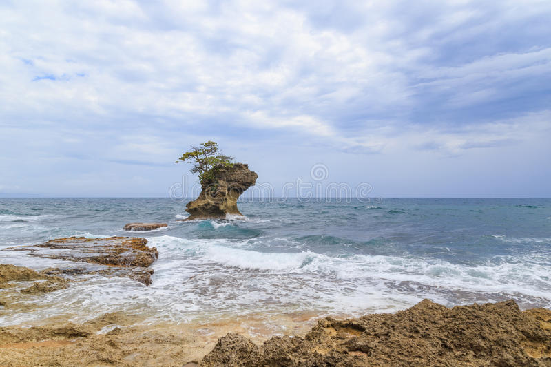 Rock formation at Manzanillo Costa Rica royalty free stock photo