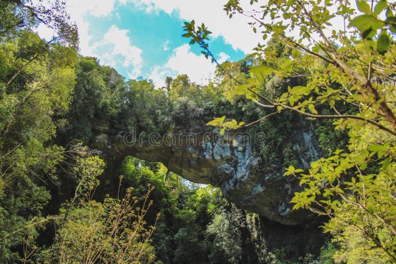 Rock formation at Oparara basin arch, South Island, New Zealand.  royalty free stock image