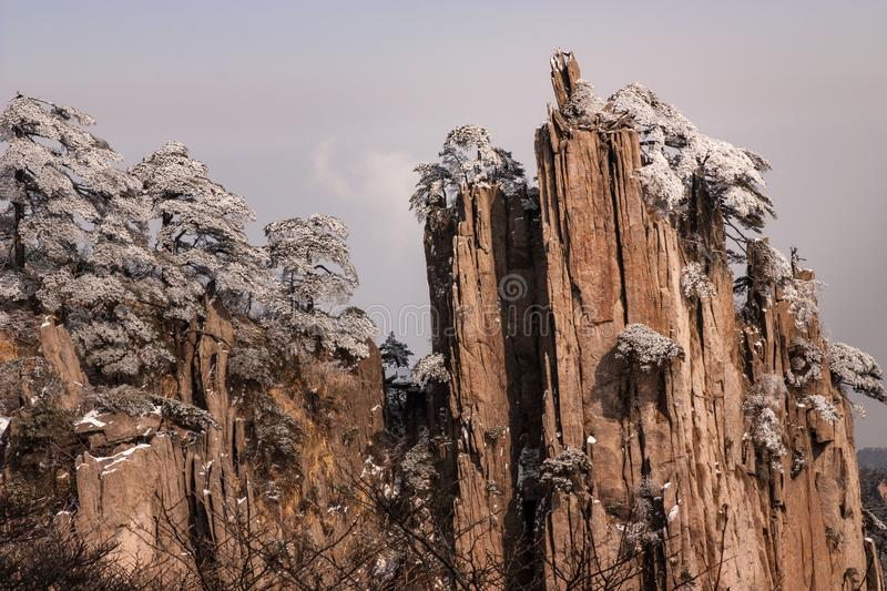 Rock Formation and Pine Trees at Shixin Peak, Huangshan or The Yellow Mountain,Anhui,China royalty free stock image