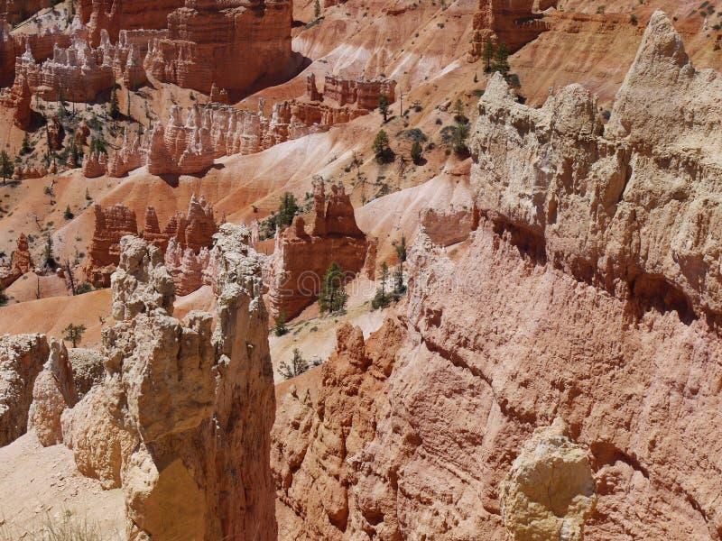 Rock formations at Bryce Canyon, Utah, USA royalty free stock photo