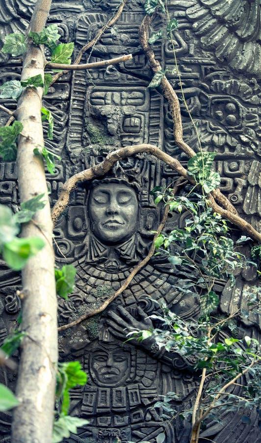 Rock fretwork. In jungle, closeup stock image