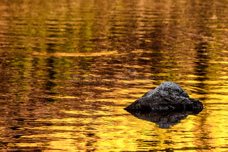 Rock and gold autumn lake reflections stock image