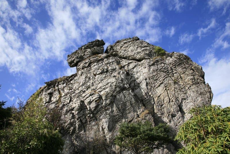 Rock of Hubei's Shennongjia royalty free stock photos