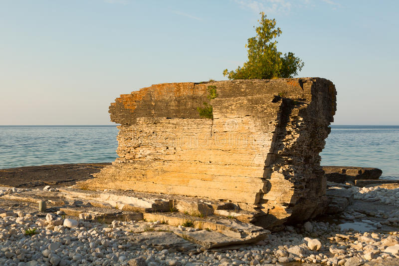 Rock. Huge rock with juniper tree on top of it on a shore of Lake Huron, Bruce Peninsula, Ontario, Canada royalty free stock images