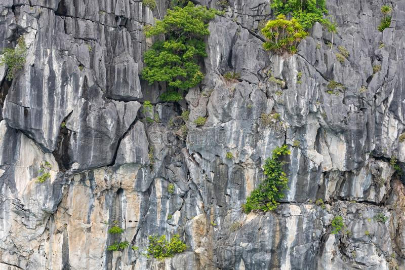 Rock islands near floating village in Halong Bay, Vietnam, Southeast Asia.  royalty free stock images