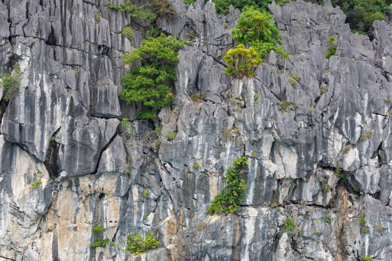 Rock islands near floating village in Halong Bay, Vietnam, Southeast Asia.  stock image