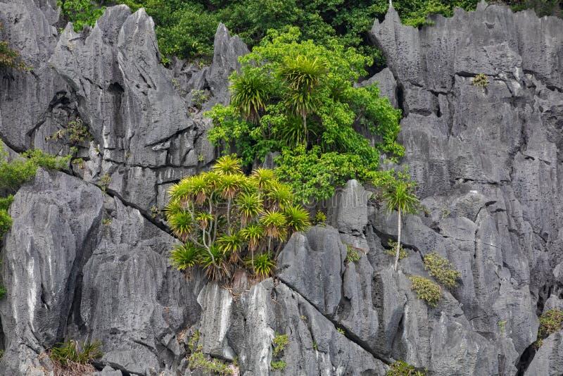 Rock islands near floating village in Halong Bay, Vietnam, Southeast Asia.  stock photo