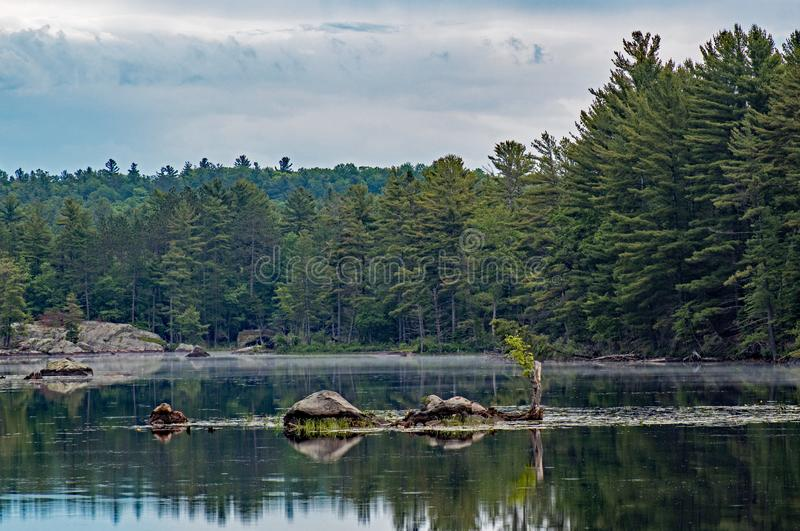Rock Islands And Pine Trees stock photo
