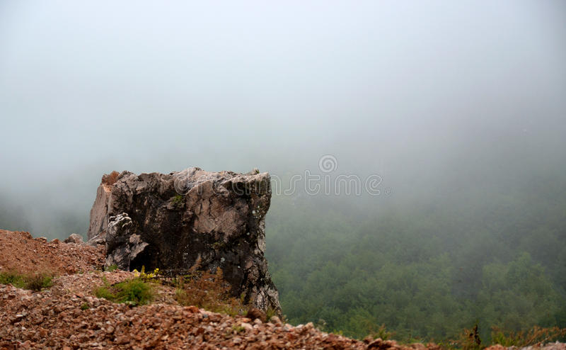 Rock Mist Forest royalty free stock image