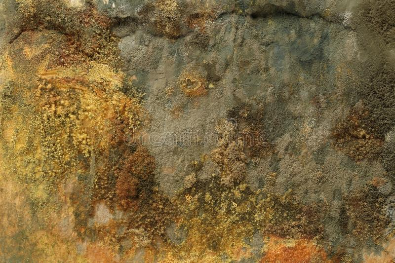 Rock, mold, moss and liken royalty free stock image