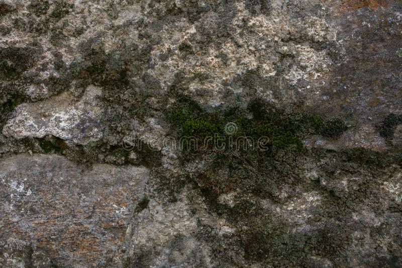 Rock and moss texture and background. Mossy stone background. Abstract texture and background for designers. royalty free stock images