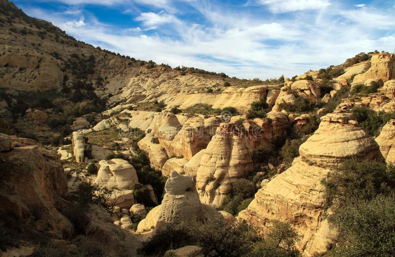 Mountain in Dana Biosphere Reserve in jordan. Rock mountain in Dana Biosphere Reserve in jordan royalty free stock photo