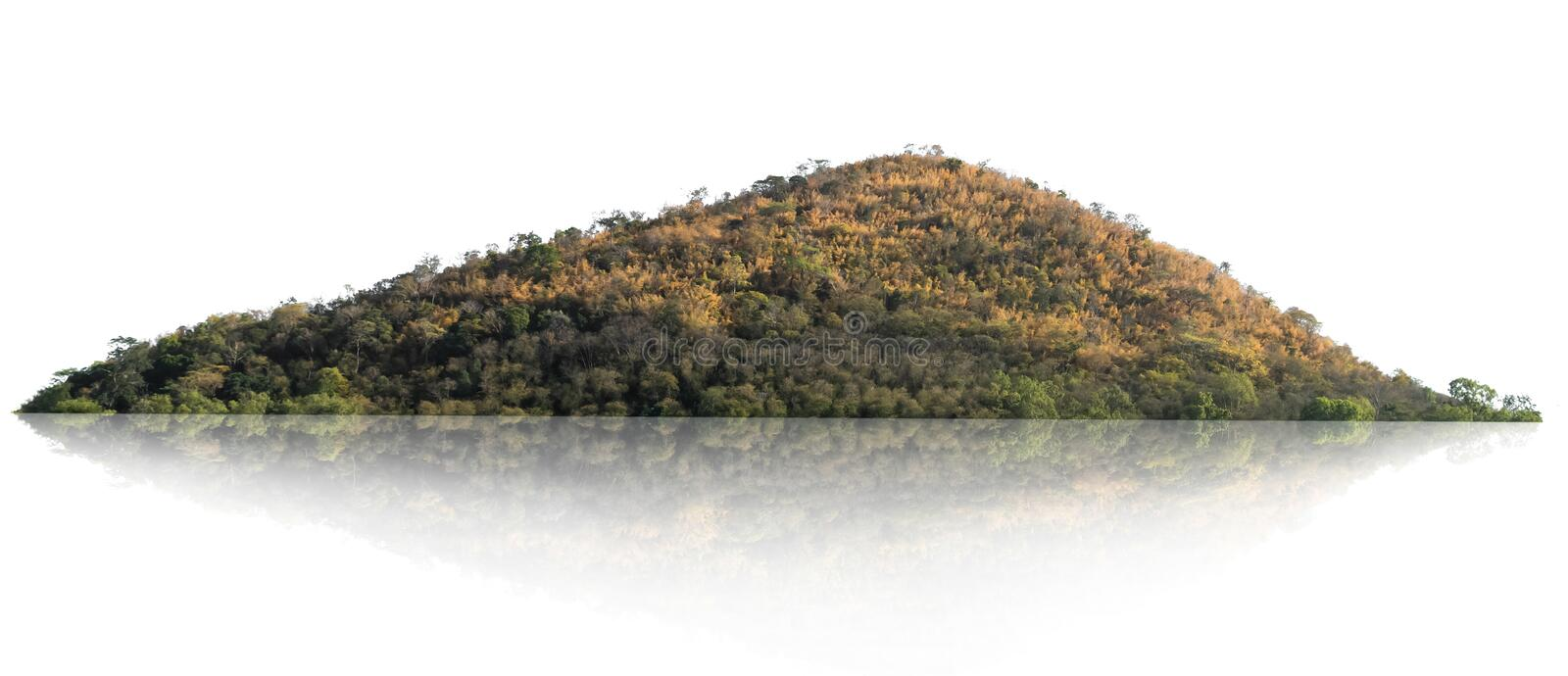 Rock mountain hill with  green forest isolate on white background stock photography