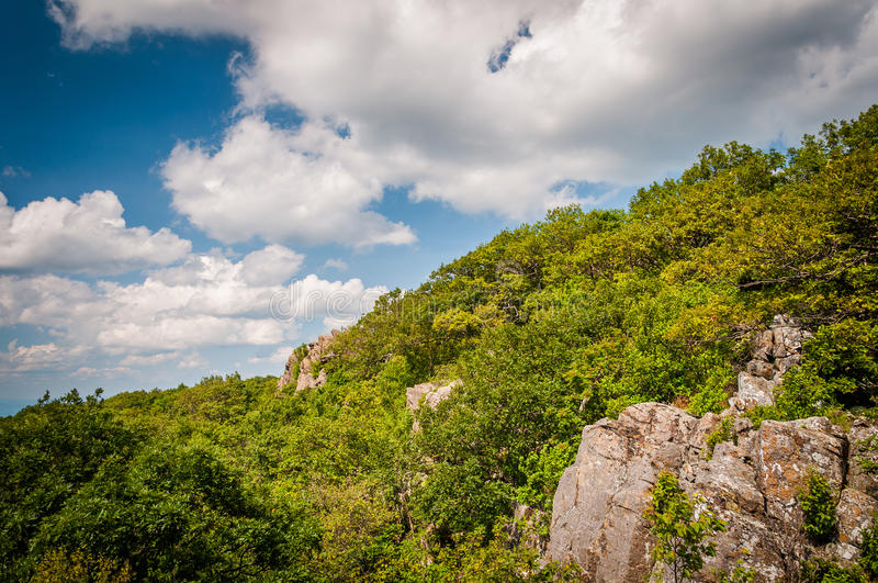 Rock outcroppings on North Marhsall Mountain, in Shenandoah National Park, Virginia. royalty free stock image