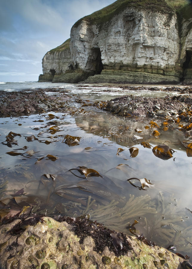 Free Rock Pools And Cliffs Royalty Free Stock Image - 32862396