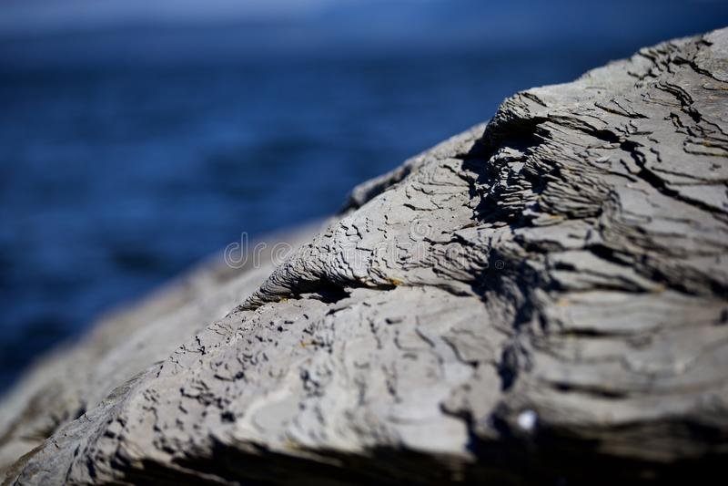 Rock On Seacoast Free Public Domain Cc0 Image