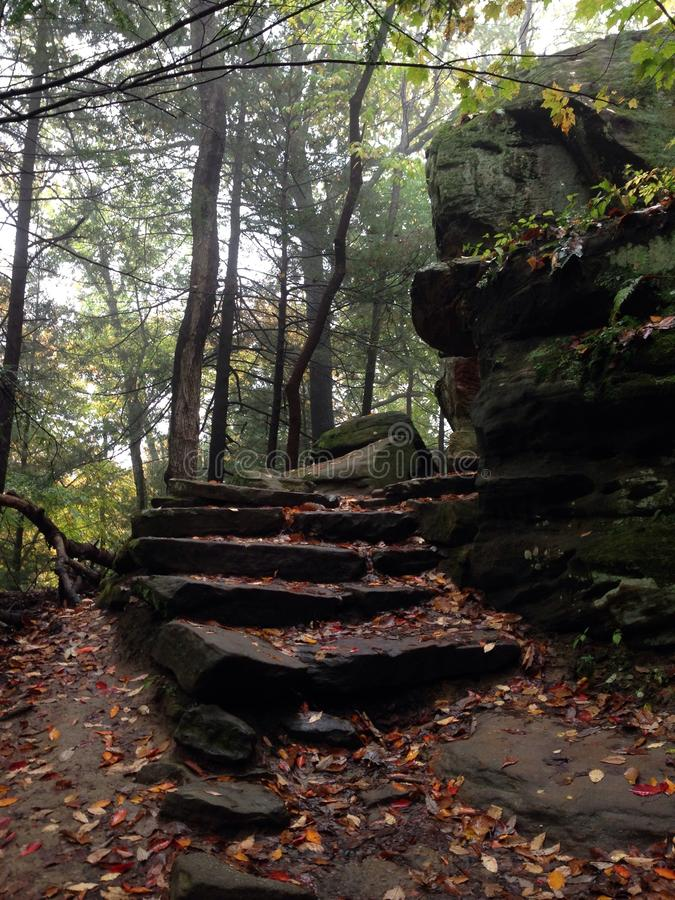Rock Stairs curving into the woods royalty free stock photo