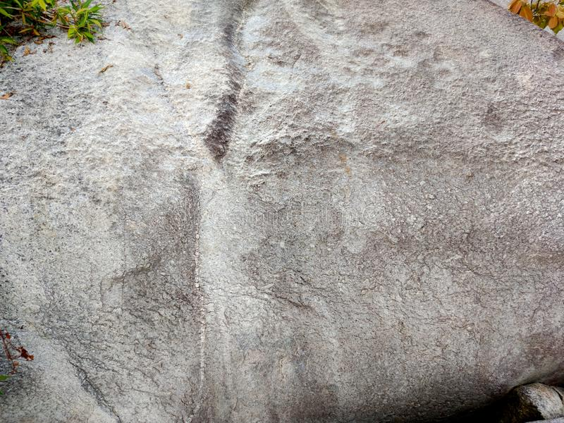 Rock or stone texture background. royalty free stock photography