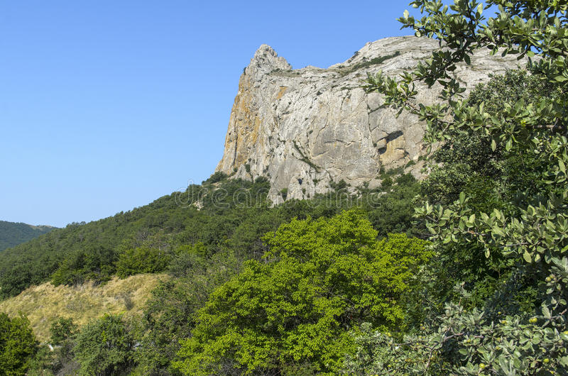 Rock surrounded by greenery Crimea royalty free stock image