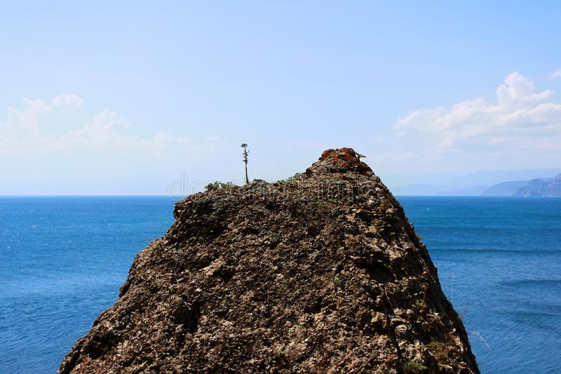 A rock texture of a mountainous rock on which a dried lone plant against the blue sea and sky. The peak of the mountain above sea royalty free stock image
