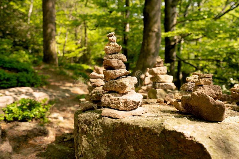 Rock, Tree, Path, Forest stock image