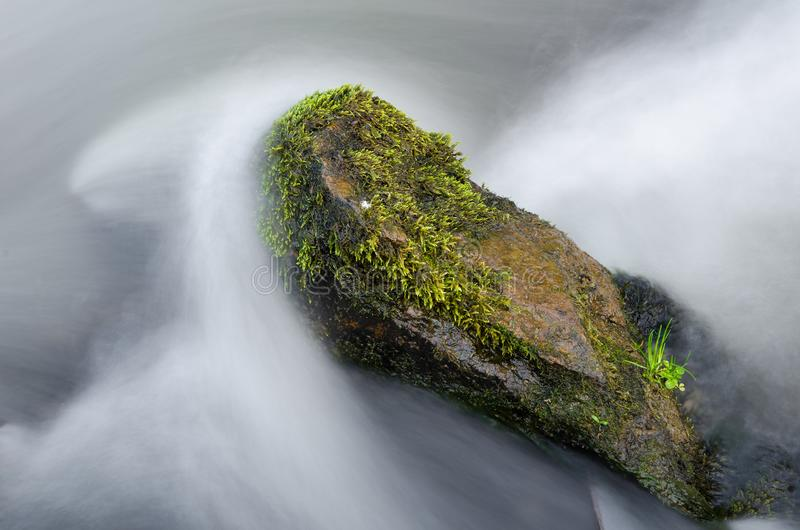Rock in a tumultuous mountain river, big stone in water covered by amazing green moss in a beautiful autumn day. Beautiful abstract natural landscape royalty free stock photography