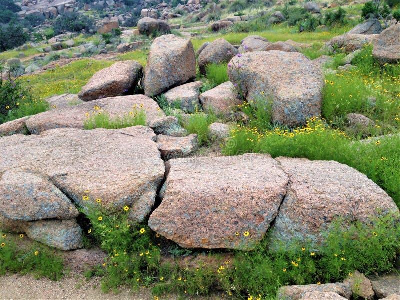 Rock, Vegetation, Boulder, Bedrock Free Public Domain Cc0 Image