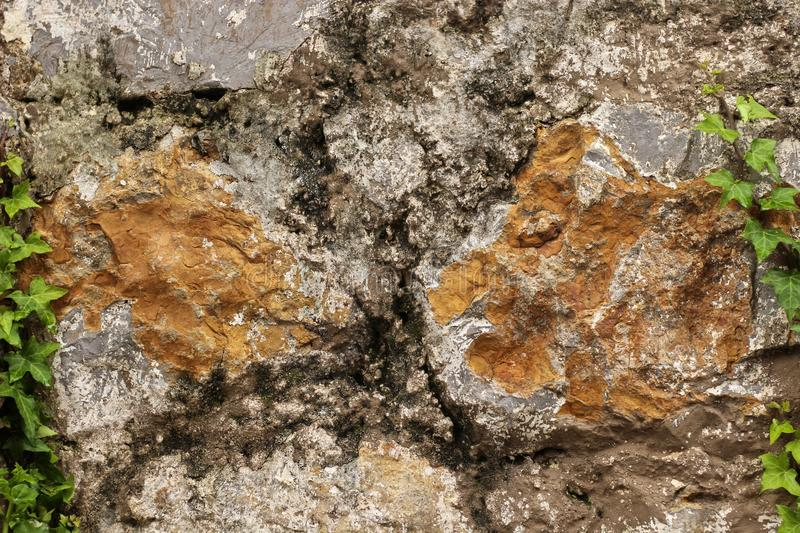 Rock wall texture with green royalty free stock photo