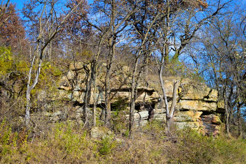 Rock Wall with Trees in Fall. A natural rock wall with fall threes and bushes in the countryside of Wisconsin in autumn stock photography