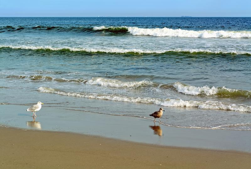 Rockaway海滩,纽约,美国 库存图片