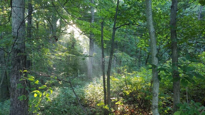 Rockbridge State Nature Preserve Free Public Domain Cc0 Image