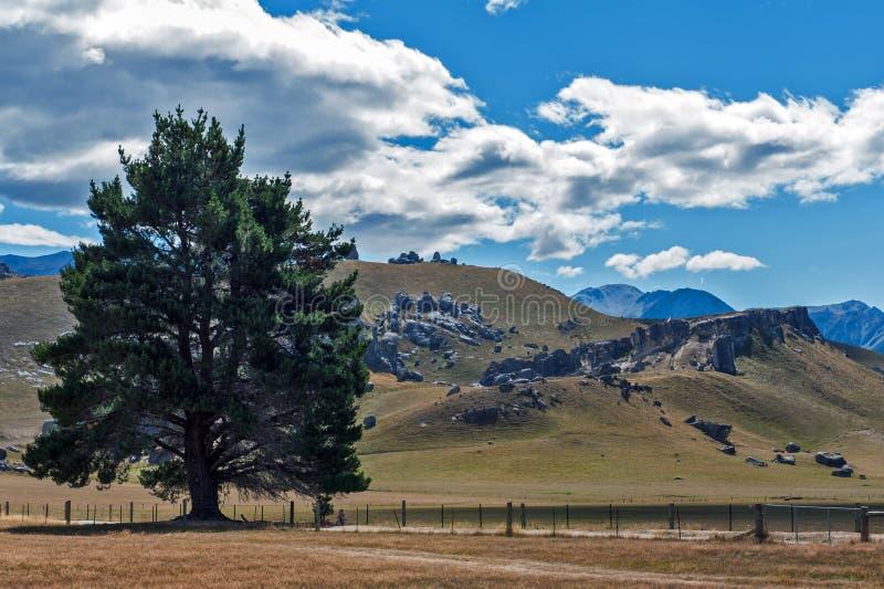 Rockera kullen i sydliga fjällängar, Arthur& x27; s passerar, den södra ön av Nya Zeeland royaltyfri fotografi