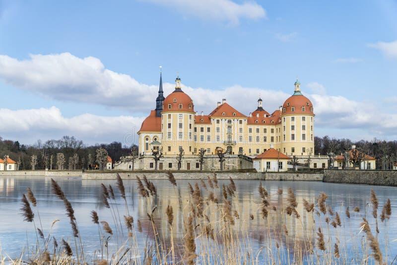 Rockera Moritzburg i Dresden med reflexioner i isen i vintern arkivbild