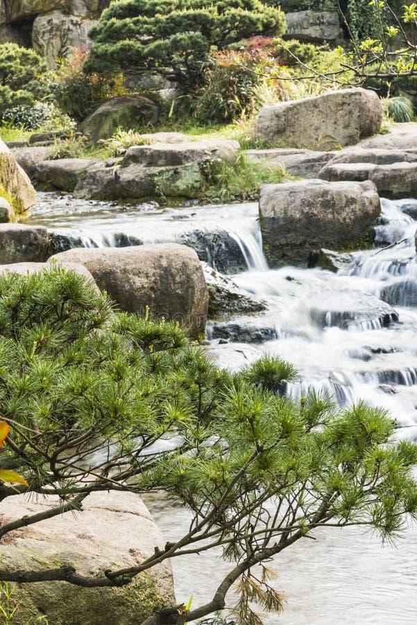 Rockery и проточная вода стоковая фотография