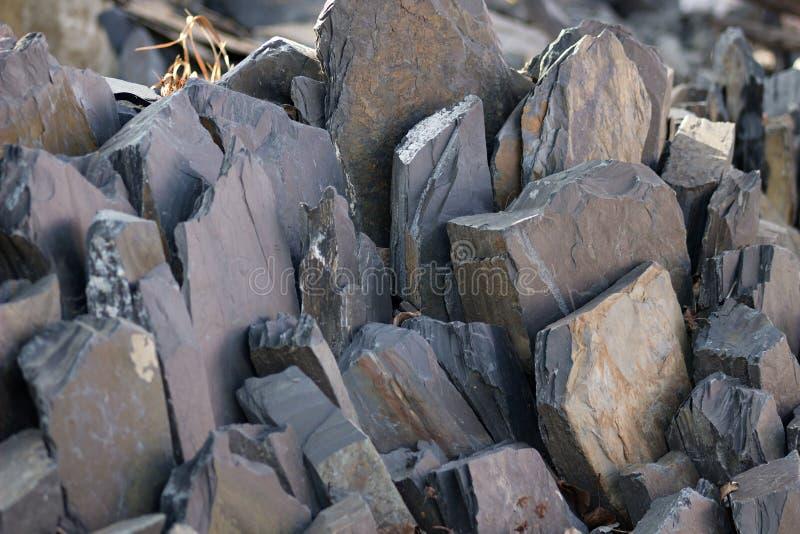 Rockery сада стоковое фото rf