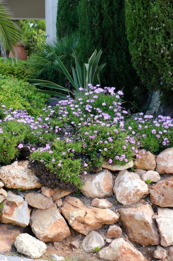 Rockery del giardino fotografia stock libera da diritti