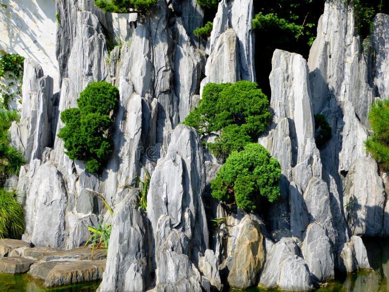 Rockery krajobraz zdjęcie stock