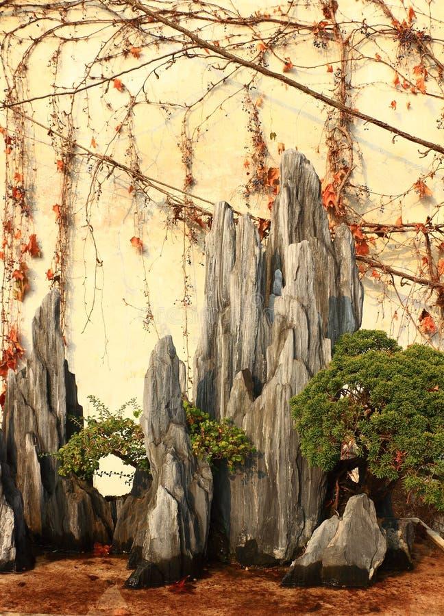 Rockery krajobraz przy liuyuan ogródem przy jesienią obraz stock