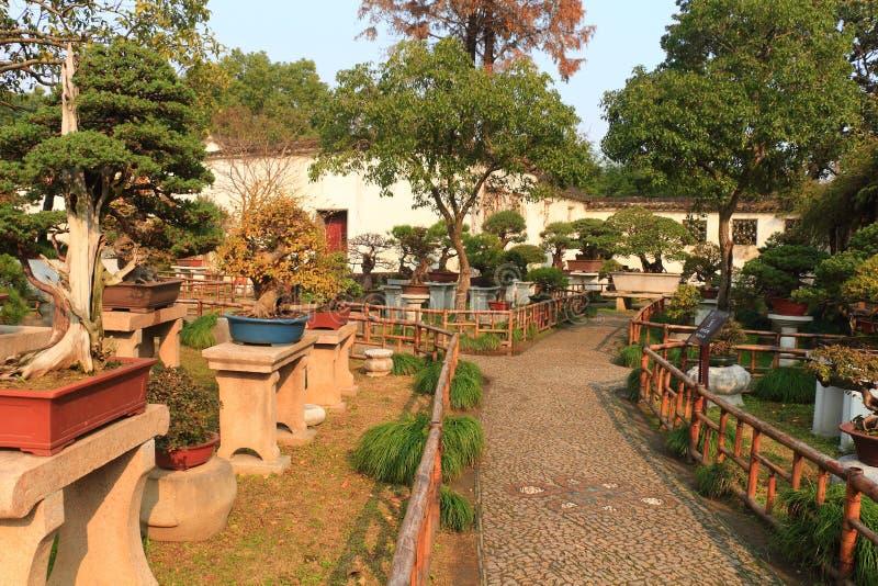 Rockery landscape at liuyuan garden at autumn royalty free stock photography