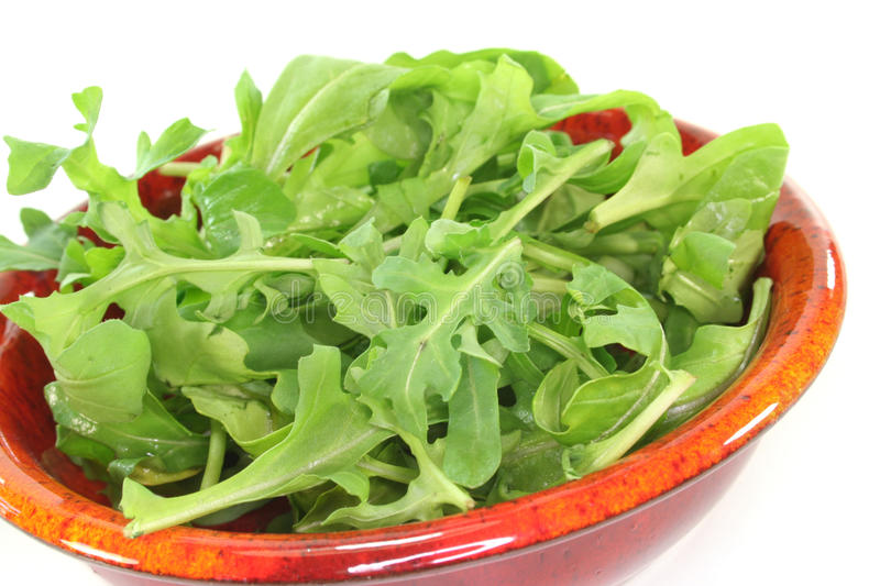 Rocket. A bowl of rocket leaves on a white background royalty free stock images
