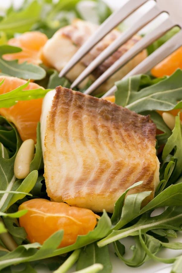 Rocket Salad with Tilapiini royalty free stock photos