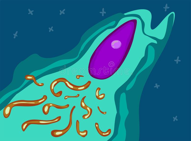 Rocket ship like molecule in microworld. slime Space rocket launch in microcosm. Project start up. Vector illustration. stock illustration