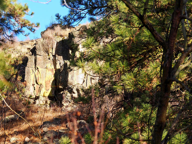 Rockface в лесе стоковые изображения rf