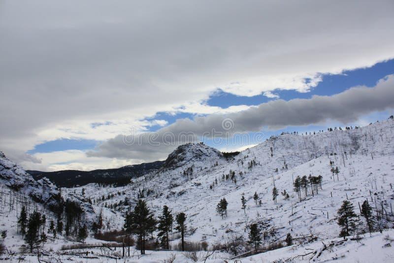 Rockie-Berge stockfotografie