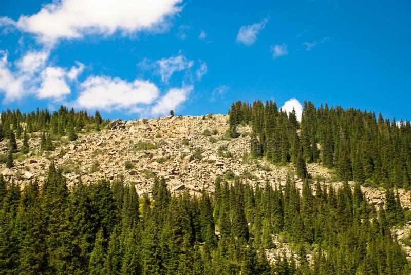 Rockies royalty free stock photography