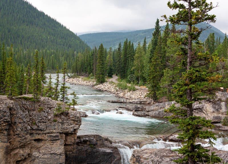 Rockies waterfall royalty free stock image