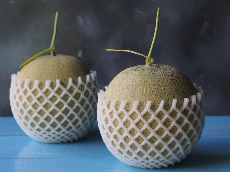 Rockmelon frukt i netto skum arkivfoton