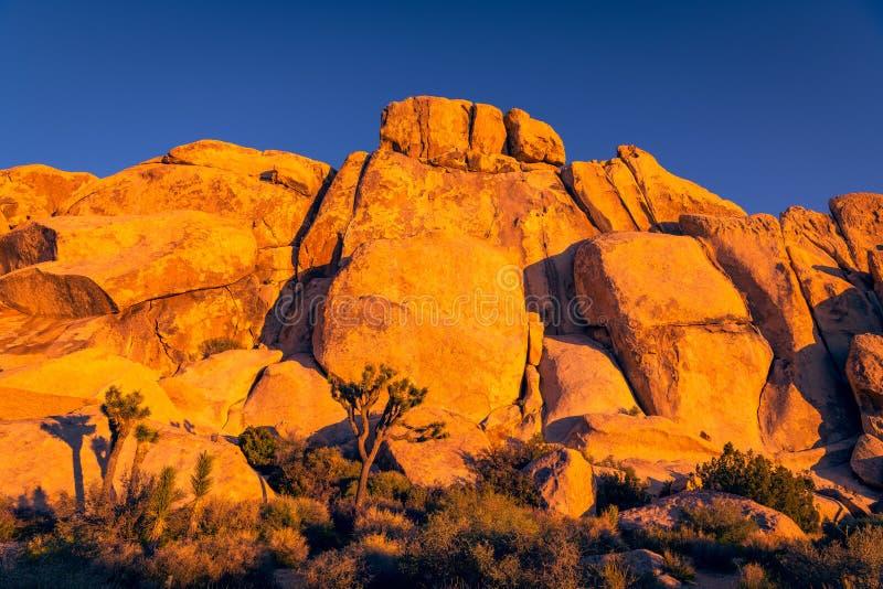 Rockowa formacja, falezy i głazy, jarzymy się pomarańcze i złota w wieczór świetle zmierzch przy Joshua drzewa parkiem narodowym zdjęcia stock