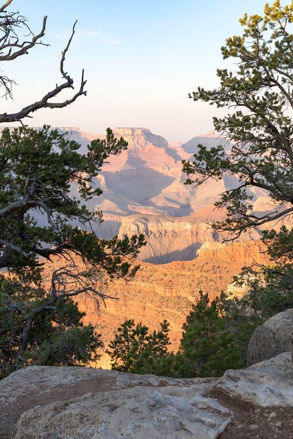 Rockowa formacja od Powel drzewa w Uroczystego jaru parku narodowym obraz royalty free